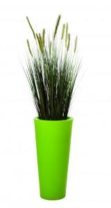 graminées herbe des dunes avec pot vert hauteur 1800 mm