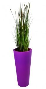 graminées zanichellie artificielles dans un pot violet hauteur 1800 mm