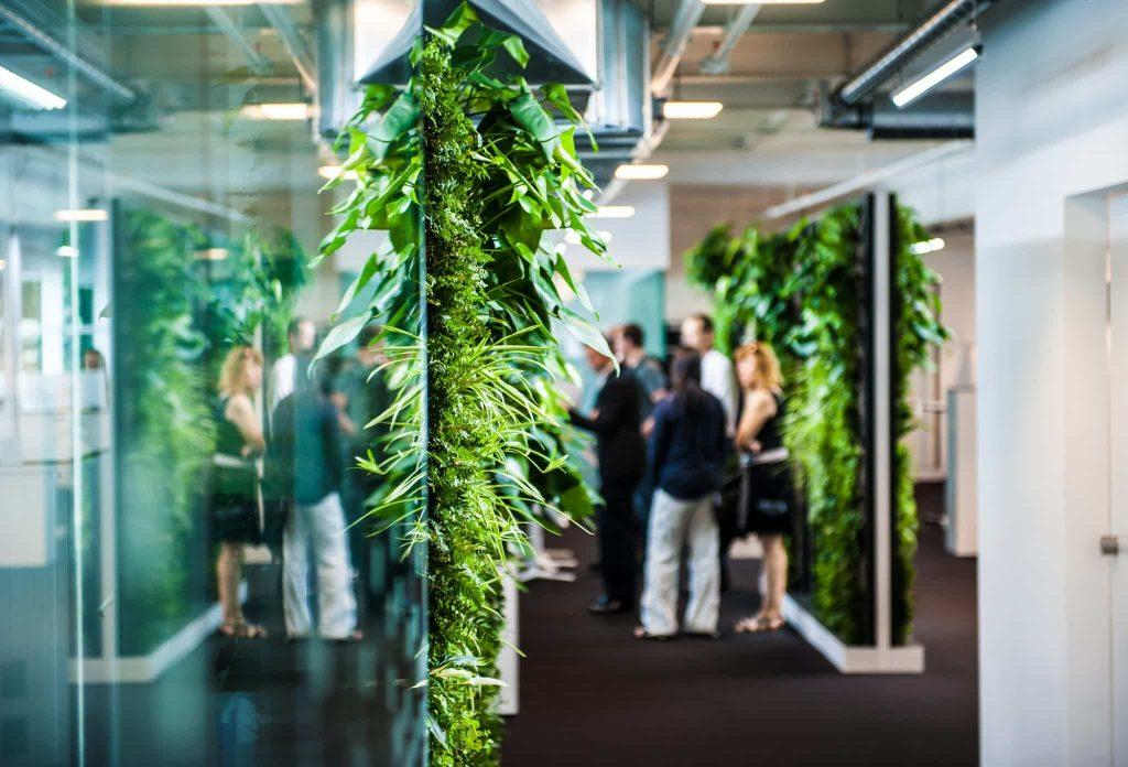 Mur de plante GREENWALL