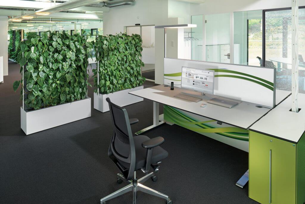 Cloison acoustique de bureau avec vraies-plantes
