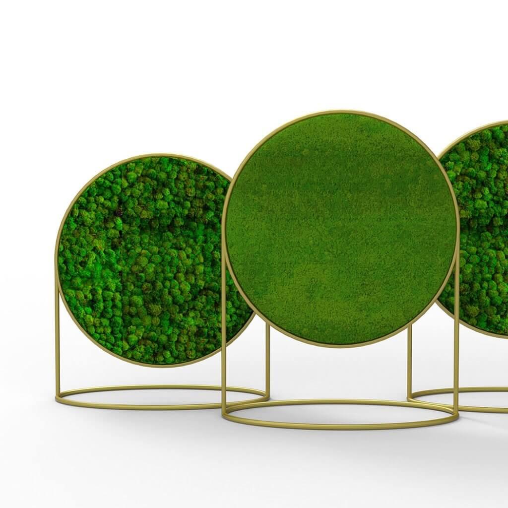 Panneau acoustique décoratif végétalisé